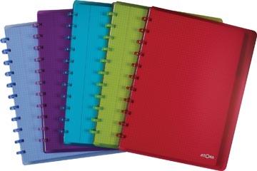 Atoma cahier ft A4+, quadrillé 5 mm, avec 6 intercalaires et 5 pochettes, en couleurs assorties